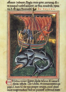 bestiary about whales